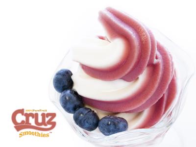 Quality Frozen Yogurt supplied by Cruz The Juice