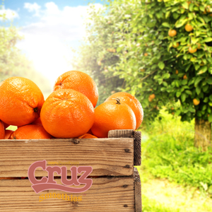 Cruz the Juice leading juice equipment supplier in the UK